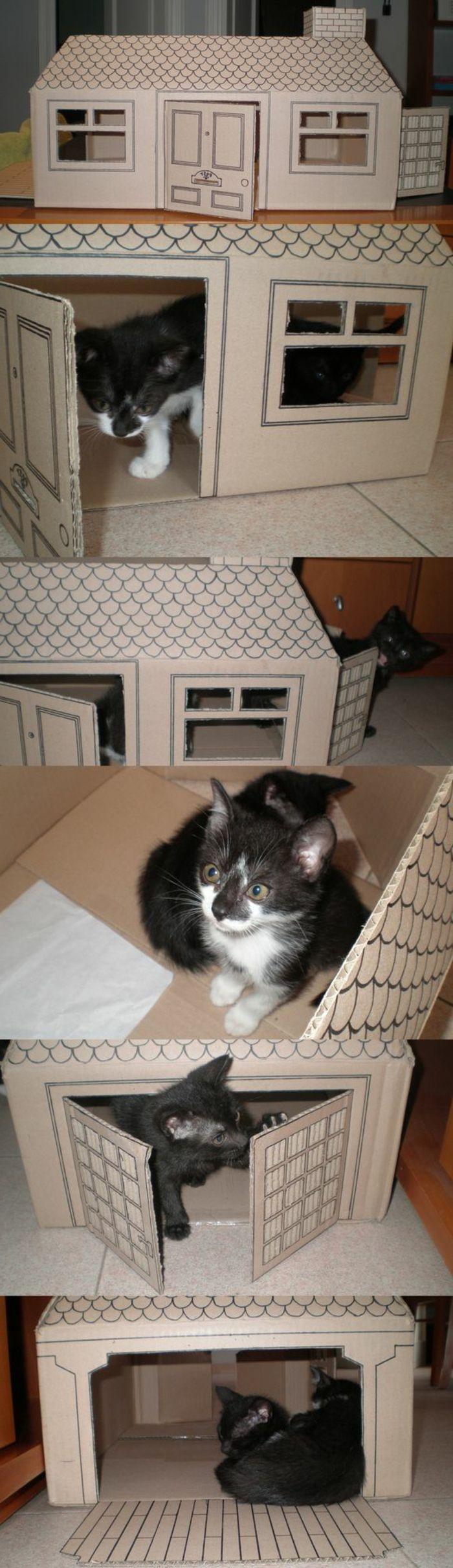 maisonette pour chat avec fenêtres et toiture dessinée