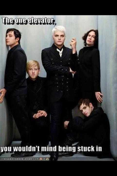 Okay so Gerard looks like he's going to blow the place up Mikey's on the floor Ray looks like he's a spy, and Bob I don't know and Franks facing a wall... WTF