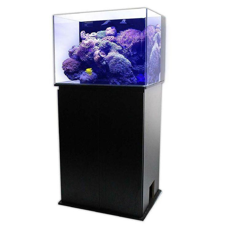 Jbj 45 Gallon Nano Cube Fresh Or Saltwater Glass Aquarium Rl 45 Biotope Aquarium Glass Aquarium Aquarium