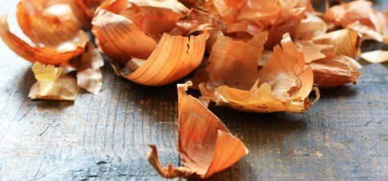 Zwiebelschale: 5 erstaunliche Anwendungen (Foto © Annett Seidler / Fotolia.com)   Auch im Garten und für Zimmerpflanzen können Zwiebelschalen nützlich sein. Einfach etwa 10 Gramm Zwiebelschalen mit einem Liter heißen Wasser übergießen, abkühlen lassen und durchsieben. Dann heißt es: Pflanzen gießen. Der Zwiebelschalen-Tee versorgt sie mit Nährstoffen und beugt Schimmelbefall vor.