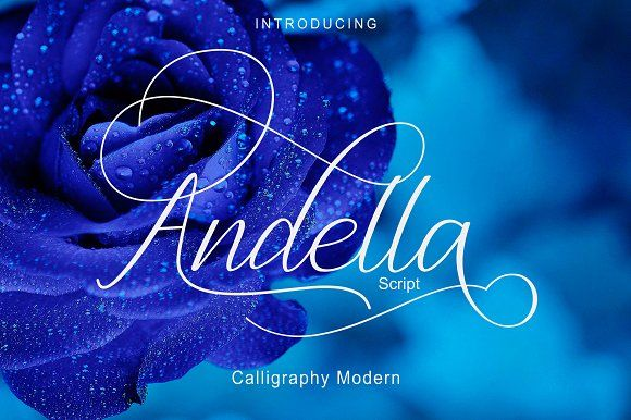 Andella Script | 30% Off by pholetter on @creativemarket