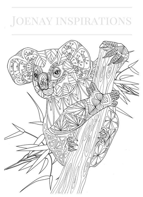 Koala Coloring Pages For Adults