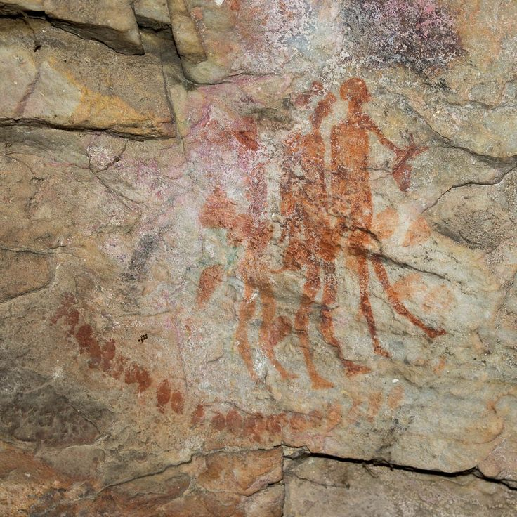 Fine-line figures at Phillipskop Mountain Reserve - the only recorded ancient rock art site on the Cape Whale Coast