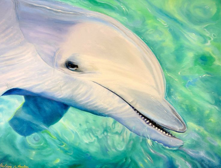 """""""How to Oil Paint a Dolphin"""" by Barbara Newton"""