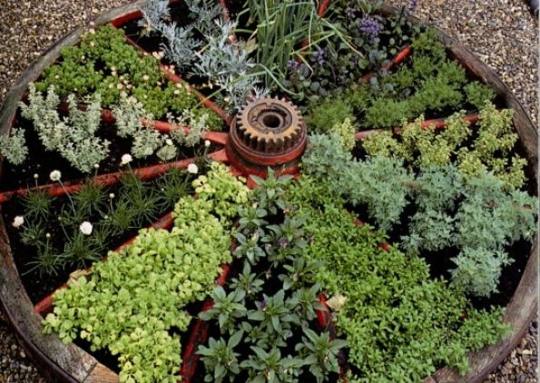I love the way an old wagon wheel was used to separate the herbs in this garden