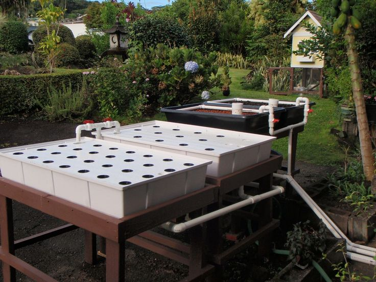 Easy diy aquaponics click to watch video http easy diy for Hydroponic raft system design