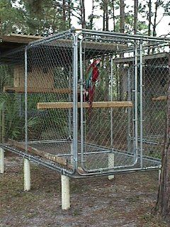 Do-It-Yourself Aviaries - Green Winged Macaw Cages