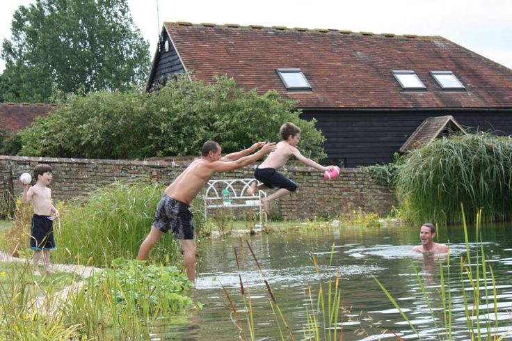 17 best images about natural pools on pinterest natural - Tring swimming pool opening times ...
