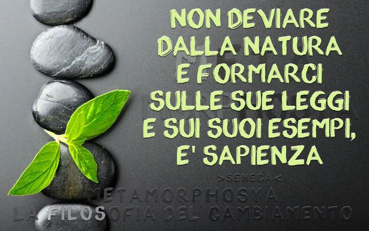 Pillole di Benessere #11...  #Metamorphosya #Seneca #natura #viverebene #benessere #salute #integrazione #lafilosofiadelcambiamento #pilloledibenessere #sapienza