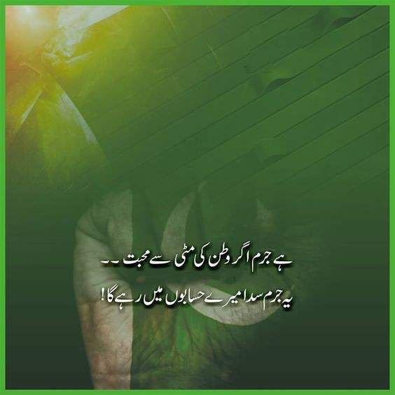Pakistan Independence Day 2017 Cws 011
