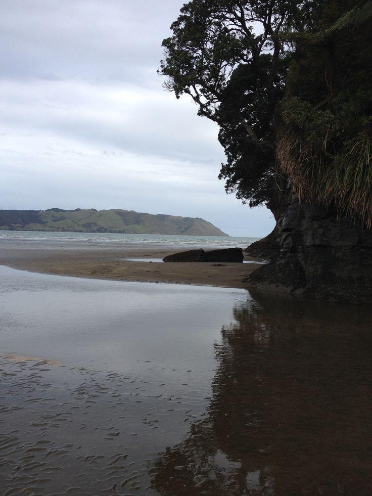 Cornwallis - Huia - Waitakere Auckland www.wooree.co.nz