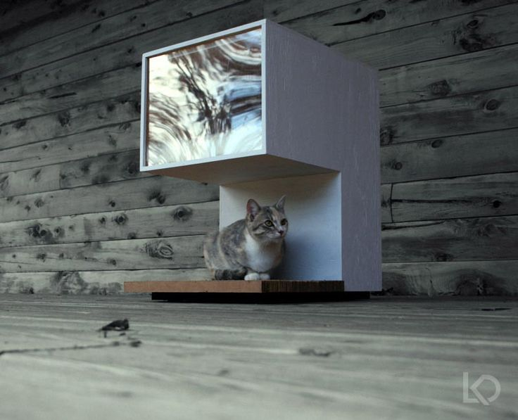 cat house plans for outside cats | Building Plans Outdoor Cat House | Good Cat Stuff!