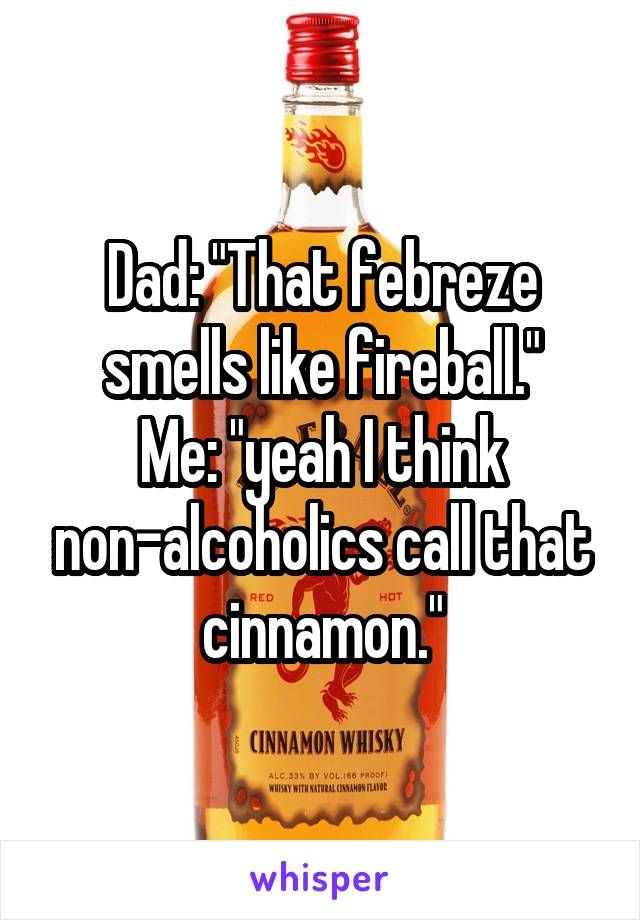 "Dad: ""That febreze smells like fireball."" Me: ""yeah I think non-alcoholics call that cinnamon."""