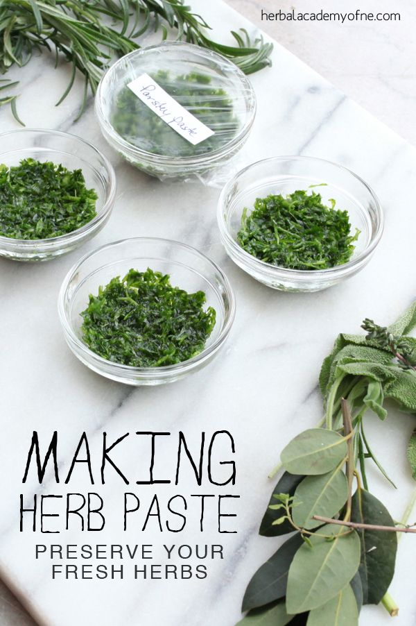 Making Herb Paste: An Easy Way to Preserve Fresh Herbs