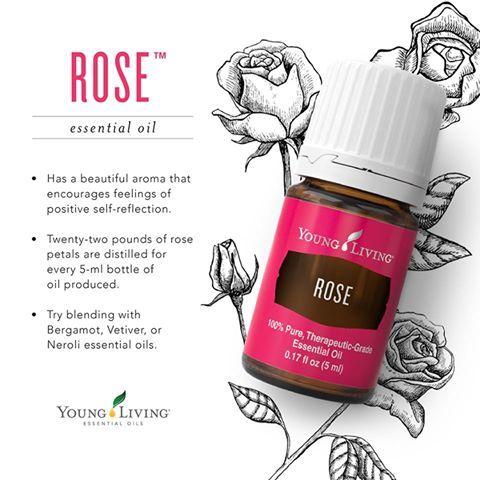 Young Living Essential Oils:  Rose | WWW.THESAVVYOILER.COM