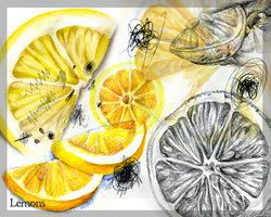 Observational studies - one object (lemon) different angles and media