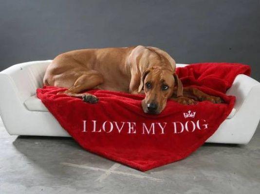 Pelechy a matrace pre psov Superpes.sk - špecializovaný obchod pre psy