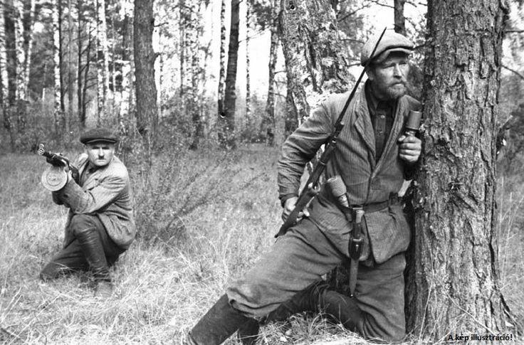 """A""""Mecseki Láthatatlanok""""a forradalom leverése után spontán szerveződött partizáncsapat volt,akik a Mecsekben bujdokolva közel három hétig ellenálltak a szovjet túlerővel sz.A """"mecseki láthatatlanok"""" gúnynév a forradalom leverése utáni években született a kormány részéről az események meghamisítására, torzítására, lekicsinylésére annak fényében, hogy az ellenállókra a magyar nép ne tekinthessen hősként, hanem inkább mint gyáva, rejtőzködő gyilkosokra, akik a kommunista rendszer ellenségei…"""