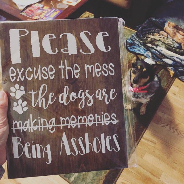 Dog Groomer Gift Business Signs Dog Grooming Rustic Home Decor Pet Spa Groomers Promise Pet Care Dog Decor Pet Salon Set Of 4 Dog Groomer Gifts Dog Signs Dog Decor