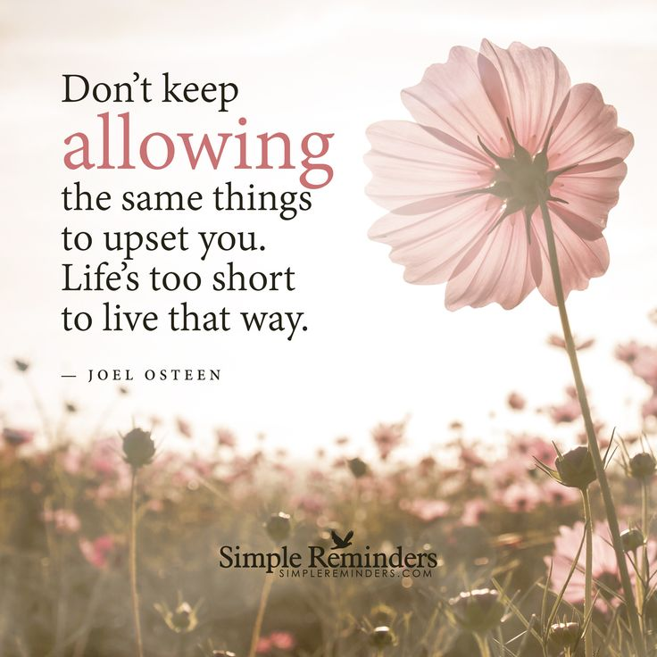 Life is short Don't keep allowing the same things to upset you. Life's too short to live that way. — Joel Osteen