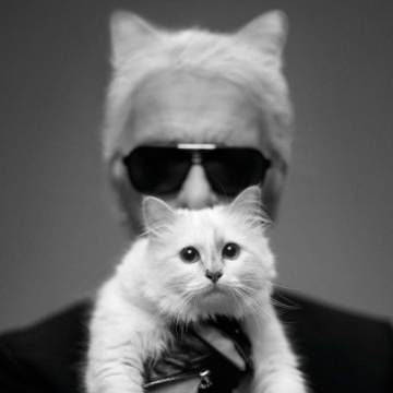 Lagerfeld's Choupette Collection