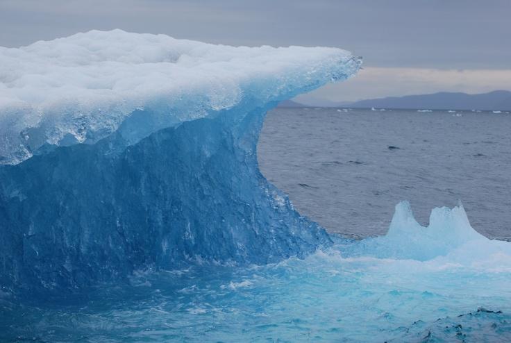 Enroute to Meares Glacier - Alaska