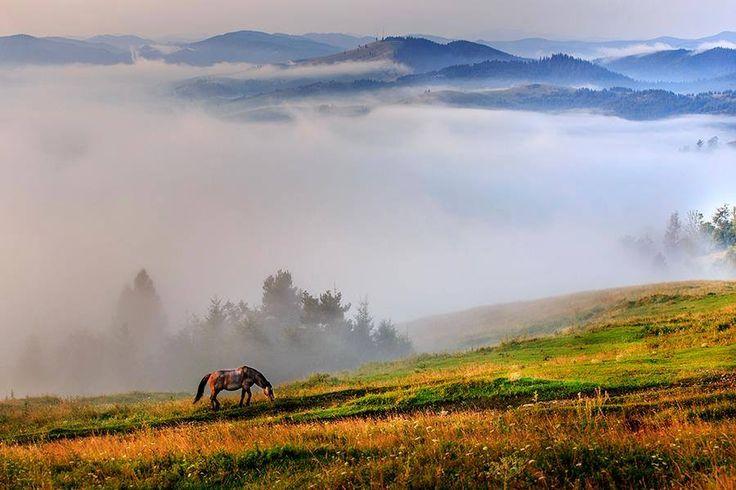 Bucovina, taram de poveste.  Foto © Sorin Onisor