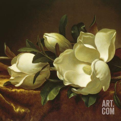 Комплект Anais Magnolia, S