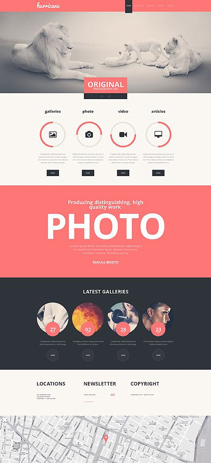 Website Template #47336