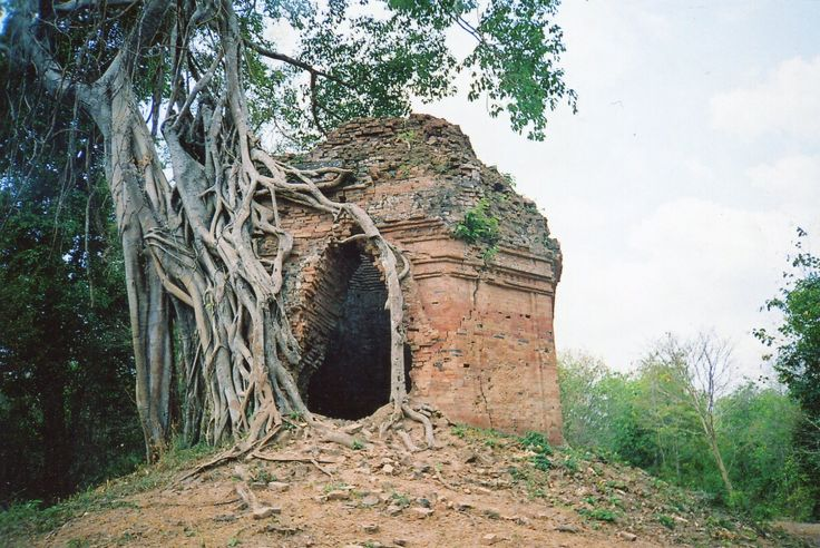 Sambor Prei Kuk, Cambodia. This was the capital of the ancient Chenla civilization 1400 years ago. The jungle rules now.