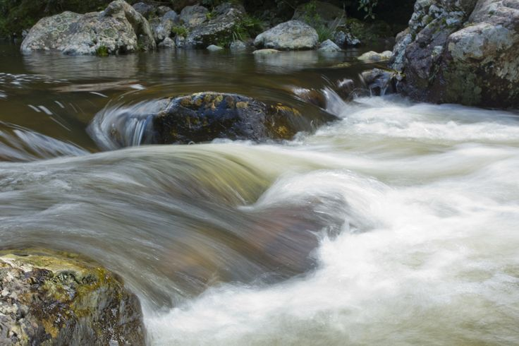 Up the river at Palmerston North New Zealand