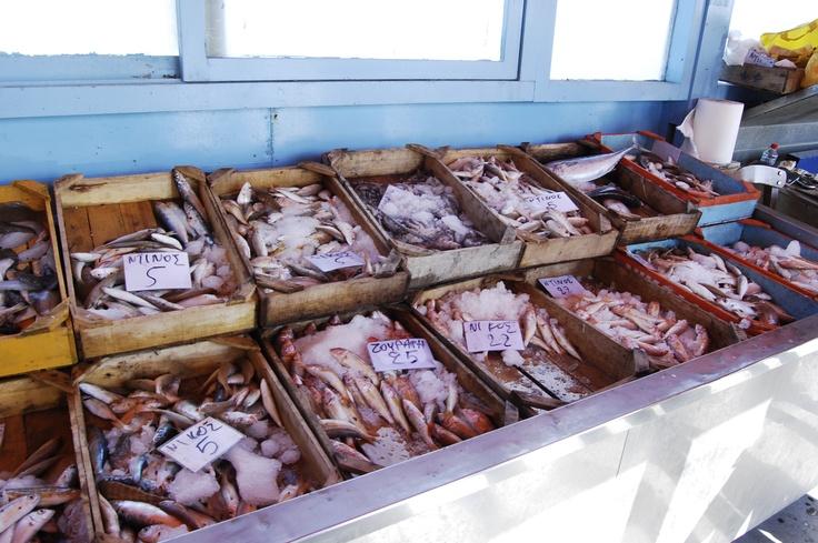 fresh fishes in Crete.