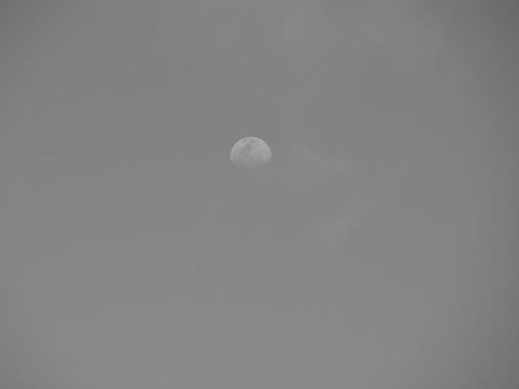 Black and White, Luna
