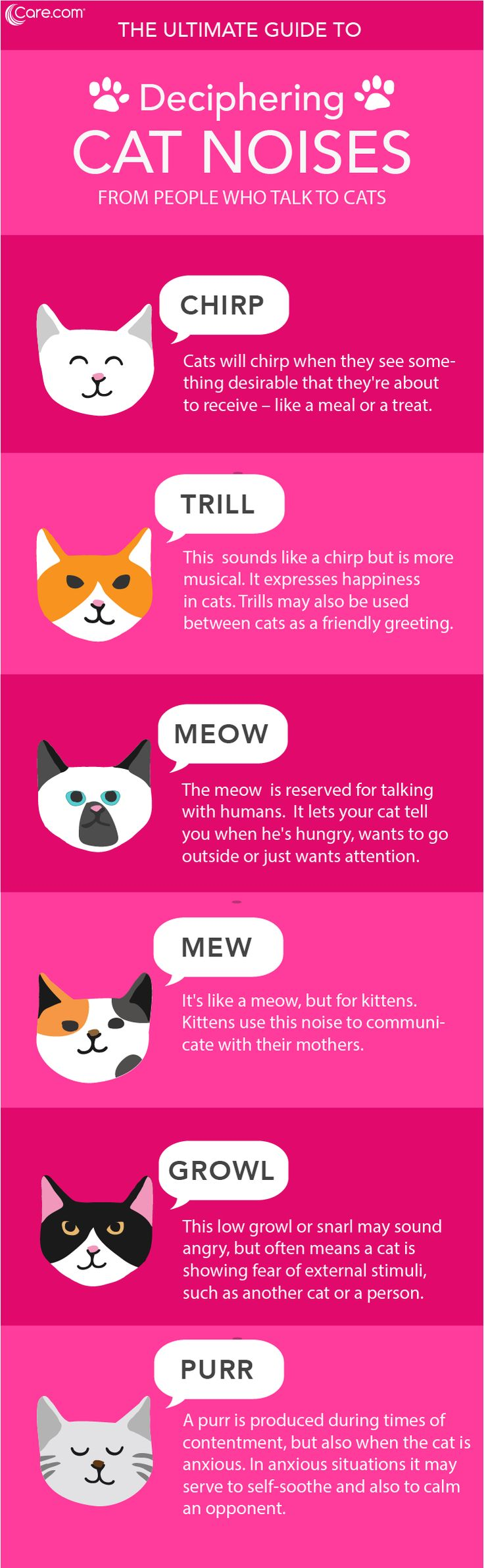 Those cat noises aren't just random sounds. They're vocalizations that mean something to your cat and you, too!