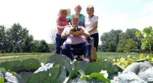 Ross community garden shows healthy habits always in season