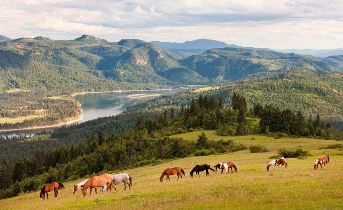 Bull Hill Guest Ranch, Kettle Falls, WA