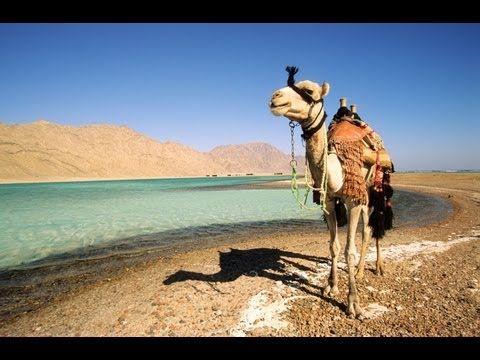 Paket Tour Kairo Mesir