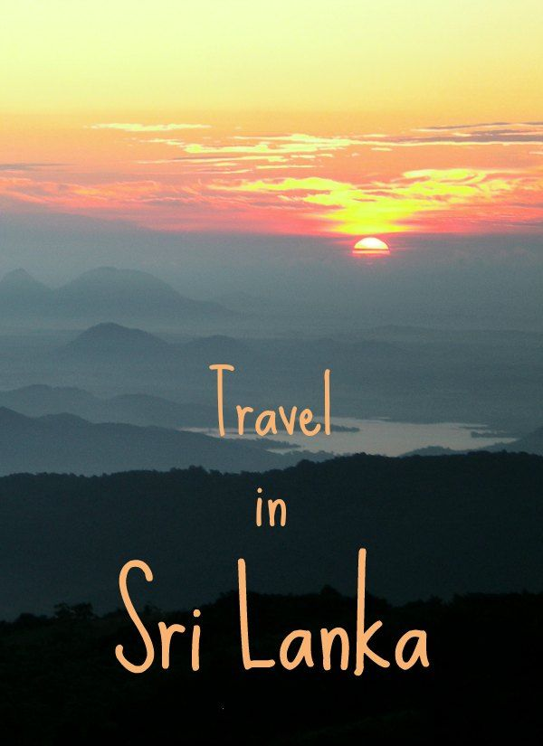 Travel in Sri Lanka. Everything you need to know about travel in Sri Lanka, with kids or without.