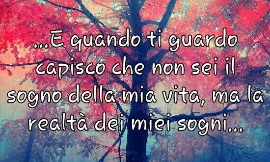 ...non sei il sogno della mia vita, ma la realtà dei miei sogni...