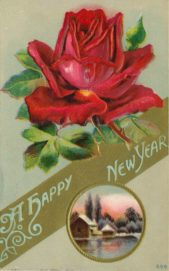 antique edwardian happy new year rose postcard with a happy new year message highlighted by large red rose blossom circa 1910