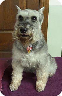 Mukwonago Wi Dog Rescue