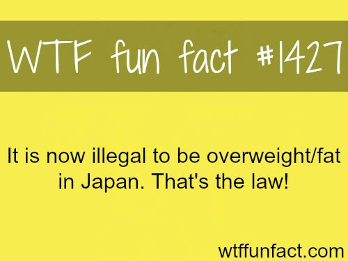25+ Best Ideas about Funny Laws on Pinterest | Interesting ...