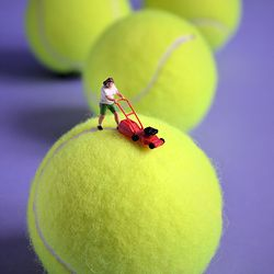 MINI - New balls please | Macro foto van filipo | Zoom.nl