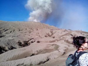 Bromo day tour Package suit for you that arrived in the morning from surabaya or malang very recommended for the cruise ship passengers. Bromo 1 day tour.
