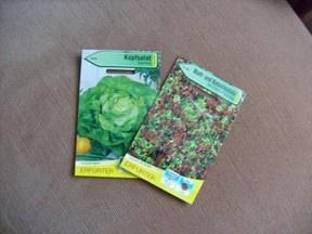 Gemüse auf dem Balkon züchten - Frühkartoffeln, Salat, Mangold und Radieschen