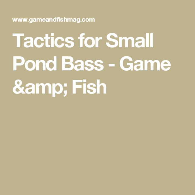 Tactics for Small Pond Bass - Game & Fish