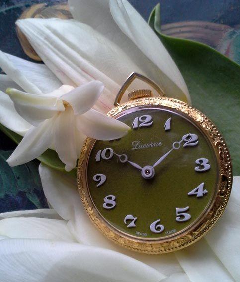 Ladies Watches by Puumuli