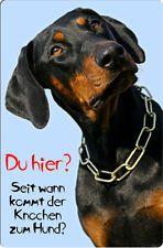 +++ DOBERMANN - Metall Warnschild SCHILD Hundeschild Alu Türschild - DBM 09 T9