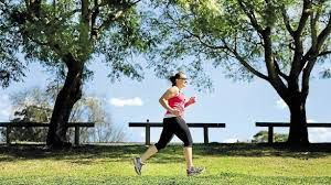 Singleton's weekly parkrun is held in Rose Point and Cook parks, just behind the town centre. It kicks off every Saturday at 8am and is totally free.