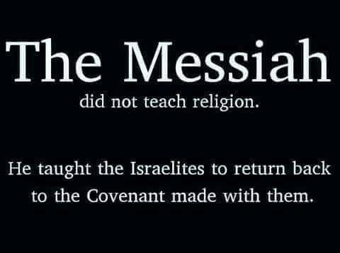 17 Best Images About Paleo Faith Of Messiah On Pinterest